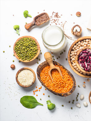 Pflanzliches Protein - Different vegetable protein sources: Lentils, peas, nuts, broccoli, tofu, various seeds, various other legumes